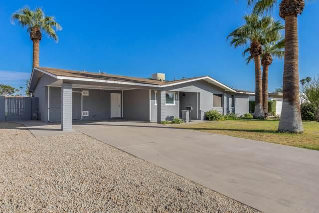 2923 N 81ST Place, Scottsdale, AZ 85251 (MLS #6152441) :: The Garcia Group