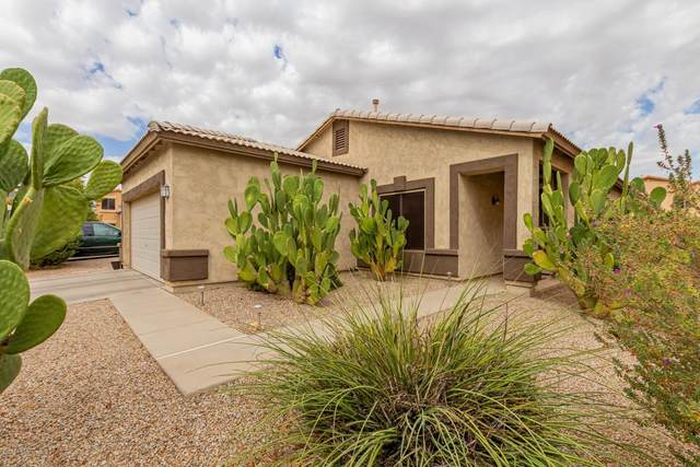 1106 E Country Crossing Way, San Tan Valley, AZ 85143 (MLS #6152450) :: Budwig Team | Realty ONE Group