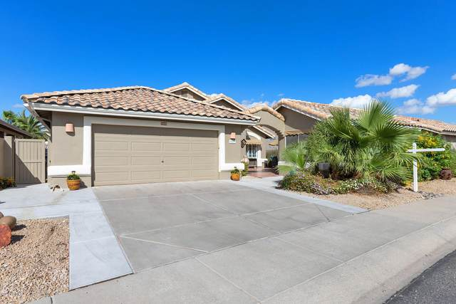 14602 W Morning Star Trail, Surprise, AZ 85374 (MLS #6152456) :: The Riddle Group