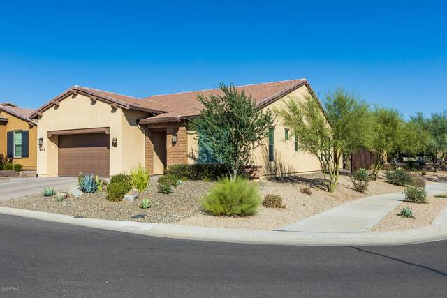 18074 E Curva De Plata, Rio Verde, AZ 85263 (MLS #6152481) :: West Desert Group | HomeSmart