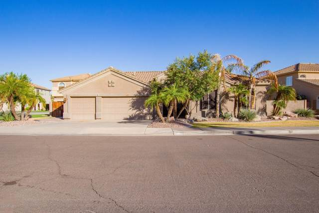 3671 S Barberry Place, Chandler, AZ 85248 (MLS #6152487) :: John Hogen | Realty ONE Group