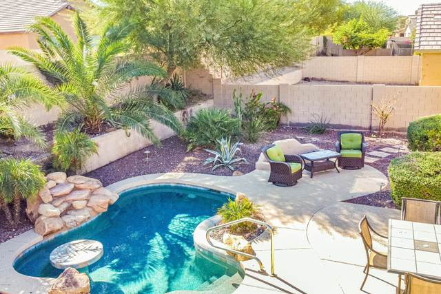 18349 W Paseo Way, Goodyear, AZ 85338 (MLS #6152534) :: CANAM Realty Group
