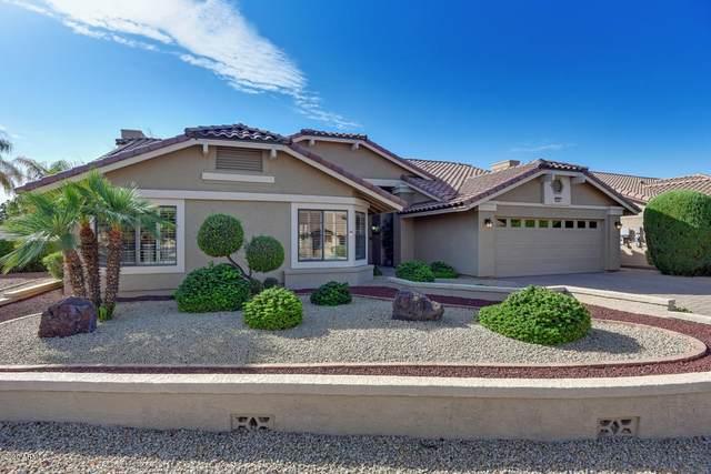 6909 W Kimberly Way, Glendale, AZ 85308 (MLS #6152551) :: Yost Realty Group at RE/MAX Casa Grande