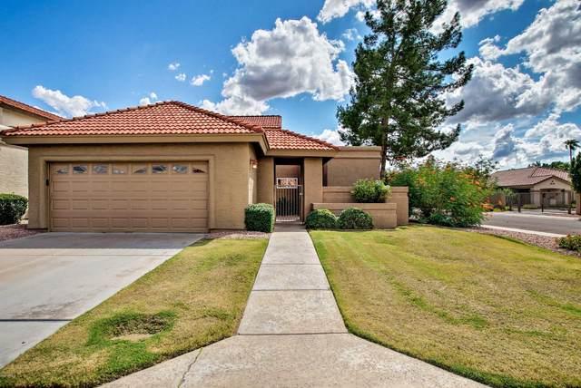8939 E Gail Road, Scottsdale, AZ 85260 (MLS #6152557) :: My Home Group