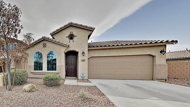 41705 W Anne Lane, Maricopa, AZ 85138 (MLS #6152561) :: Yost Realty Group at RE/MAX Casa Grande