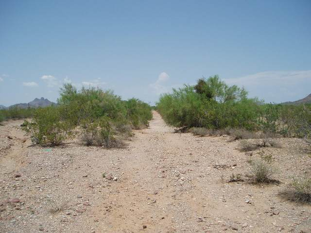 32298 W Painted Wagon Trail, Unincorporated County, AZ 85361 (MLS #6152620) :: The Laughton Team