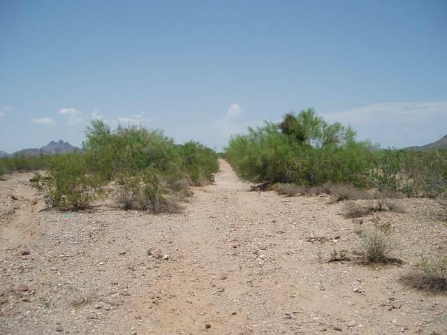 32298 W Painted Wagon Trail, Unincorporated County, AZ 85361 (MLS #6152620) :: Scott Gaertner Group