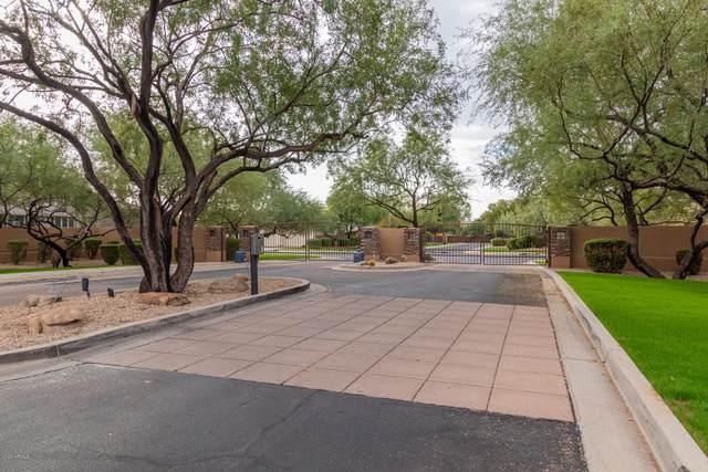 8163 E Mercer Lane, Scottsdale, AZ 85260 (MLS #6152659) :: My Home Group