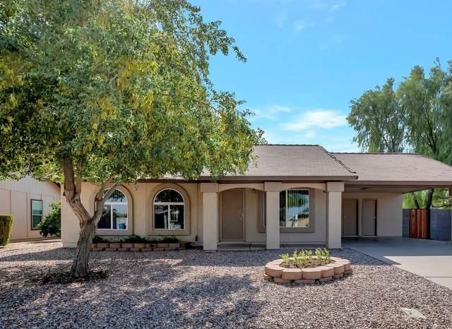 1509 W Curry Street, Chandler, AZ 85224 (MLS #6152661) :: The Garcia Group
