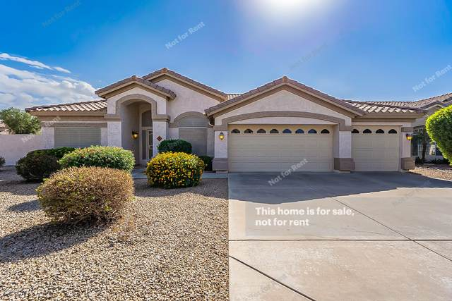 595 W Stanford Avenue, Gilbert, AZ 85233 (MLS #6152663) :: My Home Group