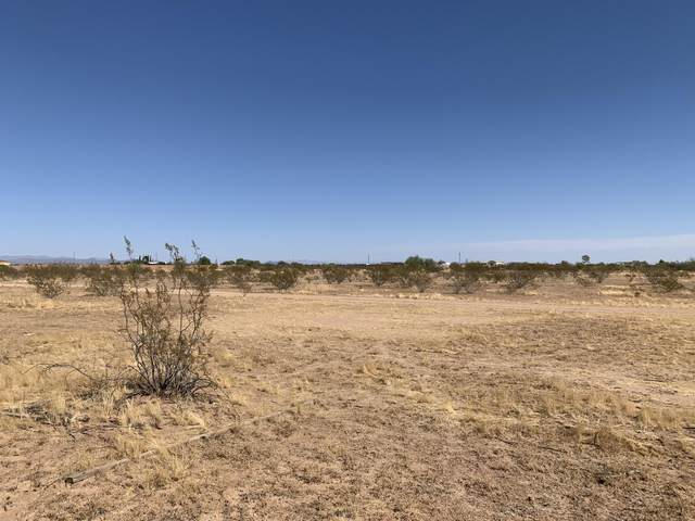 0 W Patton Road, Wittmann, AZ 85361 (MLS #6152678) :: The Everest Team at eXp Realty