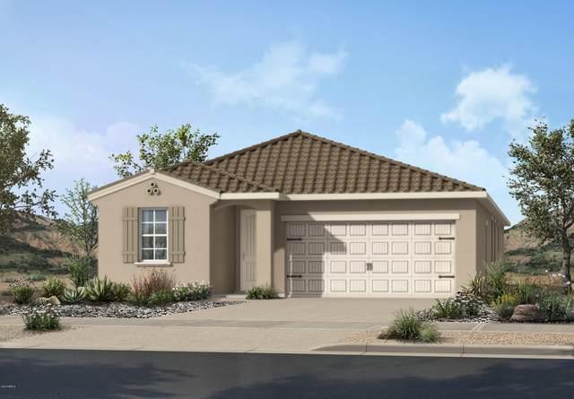 17154 W Hadley Street, Goodyear, AZ 85338 (MLS #6152697) :: The Garcia Group