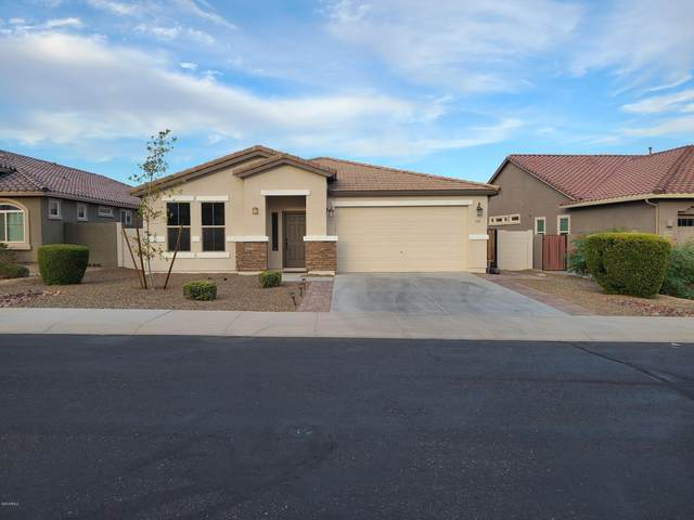 13236 W Avenida Del Rey, Peoria, AZ 85383 (MLS #6152698) :: The Riddle Group
