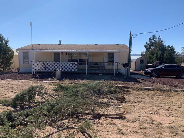 27585 N El Oro Drive, Seligman, AZ 86337 (MLS #6152701) :: West Desert Group | HomeSmart