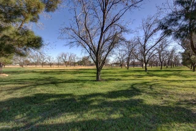 20002 E Superstition Drive, Queen Creek, AZ 85142 (MLS #6152705) :: Brett Tanner Home Selling Team