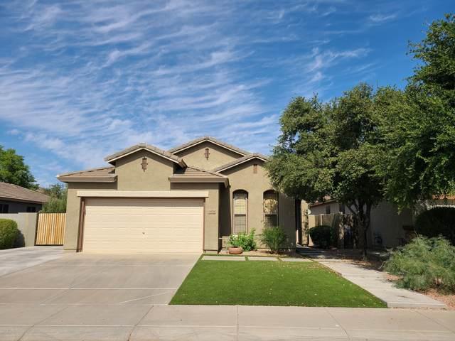 3456 E Packard Drive, Gilbert, AZ 85298 (MLS #6152719) :: Arizona 1 Real Estate Team