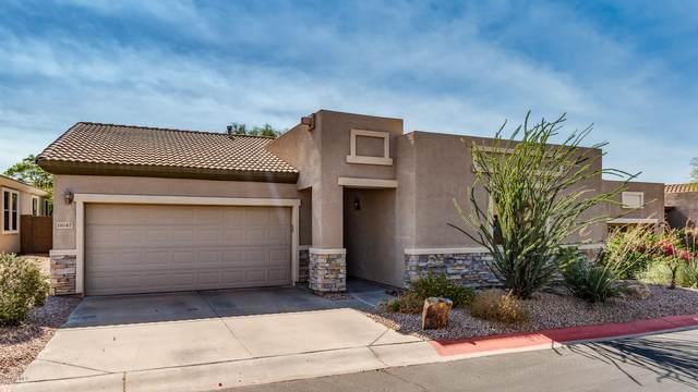 6647 E Rochelle Circle, Mesa, AZ 85215 (MLS #6152775) :: Arizona 1 Real Estate Team