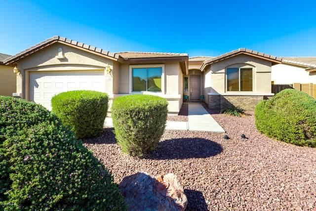 42206 W Ramona Street, Maricopa, AZ 85138 (MLS #6152829) :: Arizona 1 Real Estate Team