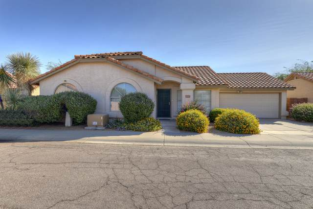 18225 N 8TH Place, Phoenix, AZ 85022 (MLS #6152836) :: West Desert Group | HomeSmart
