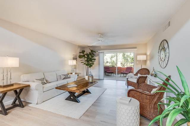 8808 E San Rafael Drive, Scottsdale, AZ 85258 (MLS #6152846) :: Arizona 1 Real Estate Team