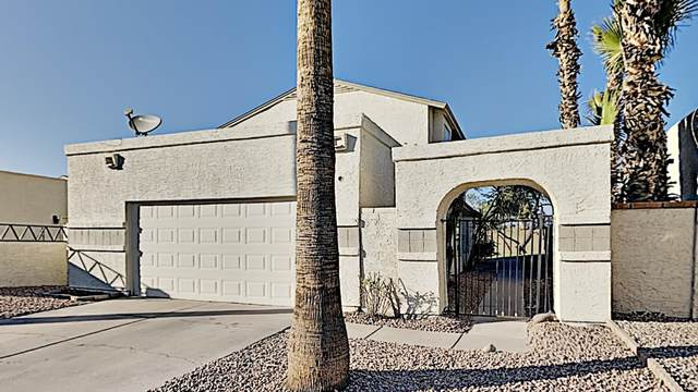 630 E Jensen Street #148, Mesa, AZ 85203 (MLS #6152884) :: CANAM Realty Group