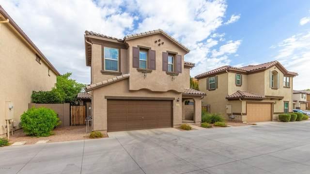 256 N Scott Drive, Chandler, AZ 85225 (MLS #6152885) :: Service First Realty