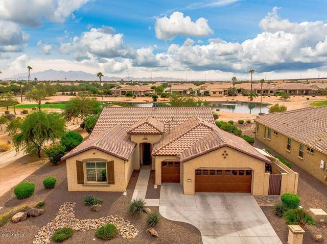 16715 W Holly Street, Goodyear, AZ 85395 (MLS #6152892) :: Devor Real Estate Associates