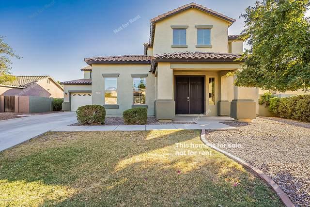 41845 W Lucera Lane, Maricopa, AZ 85138 (MLS #6152893) :: CANAM Realty Group