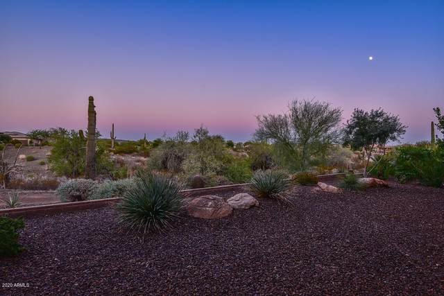 30037 N Suscito Drive, Peoria, AZ 85383 (MLS #6152919) :: Dijkstra & Co.