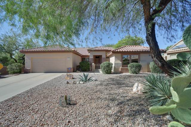 17882 N Painted Spurge Court, Surprise, AZ 85374 (MLS #6152963) :: Homehelper Consultants