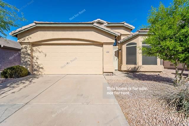 4342 E Abraham Lane, Phoenix, AZ 85050 (MLS #6152975) :: Scott Gaertner Group