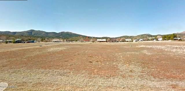 18638 S Baby Hamilton Road, Kirkland, AZ 86332 (MLS #6153008) :: Scott Gaertner Group
