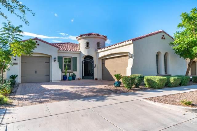 10431 E Hawk Avenue, Mesa, AZ 85212 (MLS #6153040) :: Homehelper Consultants