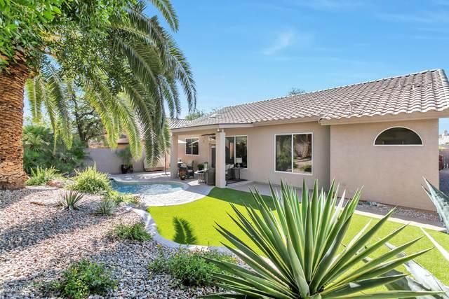 24083 N 73RD Place, Scottsdale, AZ 85255 (MLS #6153042) :: Homehelper Consultants