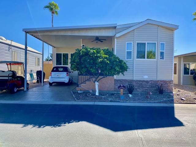 7750 E Broadway Road #15, Mesa, AZ 85208 (MLS #6153106) :: Homehelper Consultants