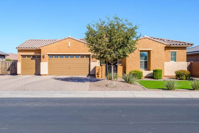3364 E Aster Drive, Chandler, AZ 85286 (MLS #6153124) :: BVO Luxury Group