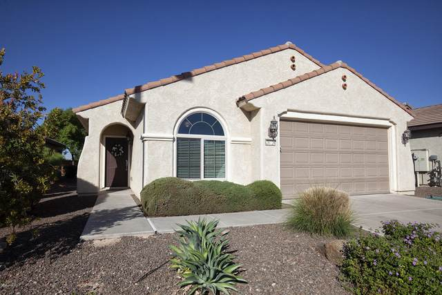20728 N 273RD Avenue, Buckeye, AZ 85396 (MLS #6153158) :: Brett Tanner Home Selling Team