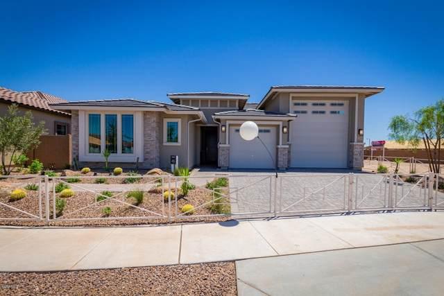 21399 S 225TH Street, Queen Creek, AZ 85142 (MLS #6153160) :: Brett Tanner Home Selling Team