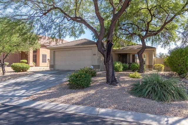 4705 E Laredo Lane, Cave Creek, AZ 85331 (MLS #6153278) :: Brett Tanner Home Selling Team
