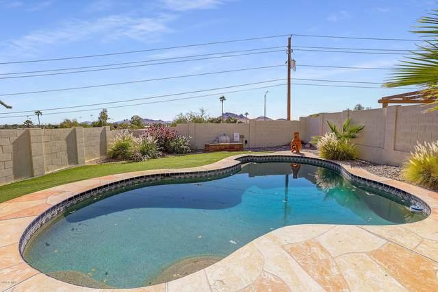 1635 E Villa Maria Drive, Phoenix, AZ 85022 (MLS #6153286) :: REMAX Professionals