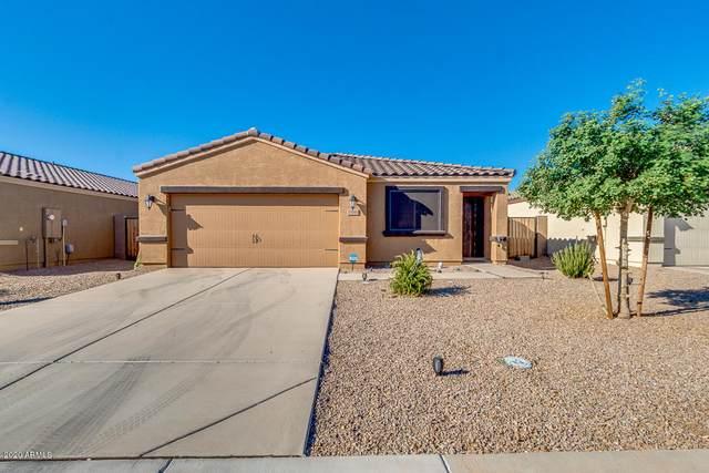 13160 E Desert Lily Lane, Florence, AZ 85132 (MLS #6153337) :: Power Realty Group Model Home Center