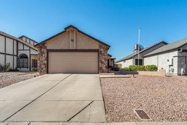 10812 N 64TH Lane, Glendale, AZ 85304 (MLS #6153390) :: Brett Tanner Home Selling Team