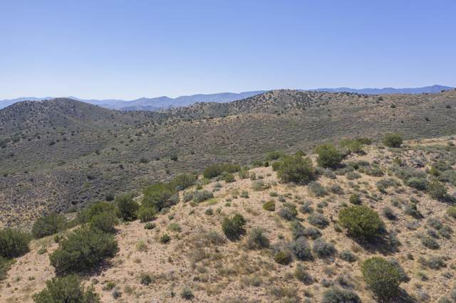 000 Eagle Drive, Dewey, AZ 86327 (MLS #6153398) :: Nate Martinez Team