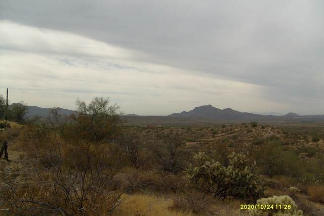 0 N Vista  Del Oro Road, Fort McDowell, AZ 85264 (MLS #6153415) :: Long Realty West Valley