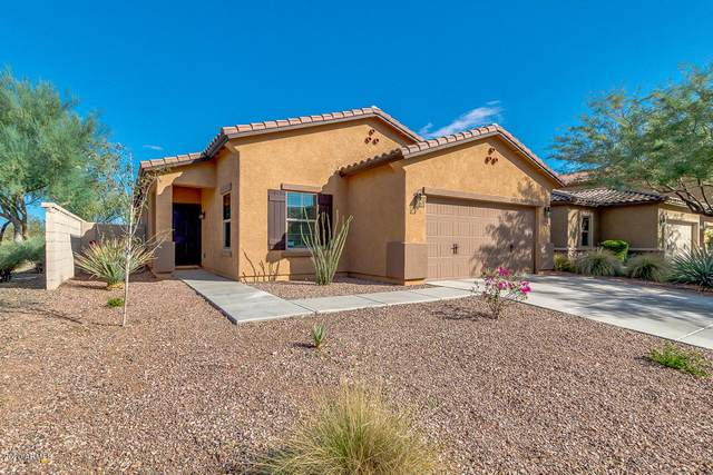 10854 W Avenida Del Rey, Peoria, AZ 85383 (MLS #6153424) :: The Dobbins Team
