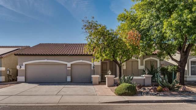 1254 S Palomino Creek Drive, Gilbert, AZ 85296 (MLS #6153431) :: The Dobbins Team