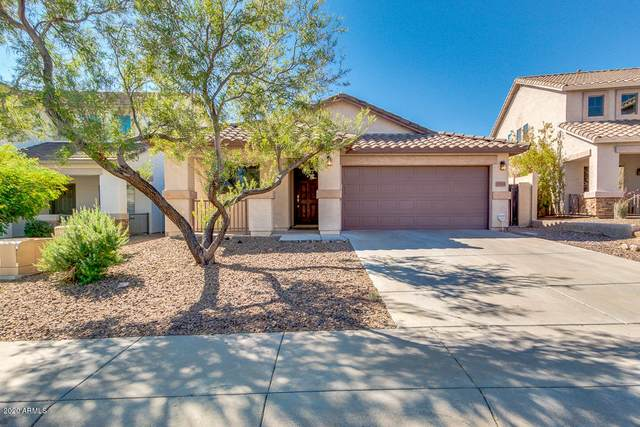 27618 N 63RD Drive, Phoenix, AZ 85083 (MLS #6153514) :: Long Realty West Valley