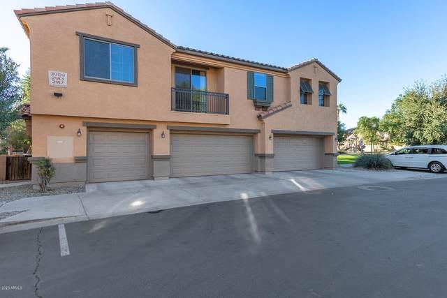 2909 E Dunbar Drive, Phoenix, AZ 85042 (MLS #6153538) :: The Dobbins Team