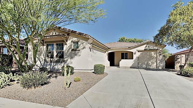 42566 W Almira Drive, Maricopa, AZ 85138 (MLS #6153595) :: Brett Tanner Home Selling Team