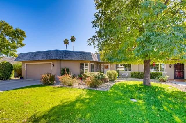 10401 W Campana Drive, Sun City, AZ 85351 (MLS #6153648) :: Howe Realty